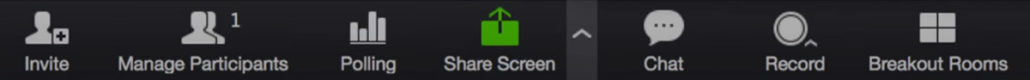 Zoom share screen button