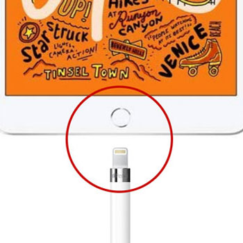 Can I Use the Apple Pencil While it's Charging?