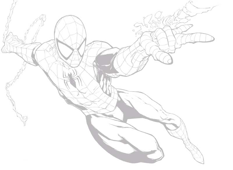 spider man line art low opacity